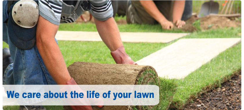 We care about the life of your lawn